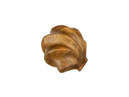 Cutie Inel Shell 6